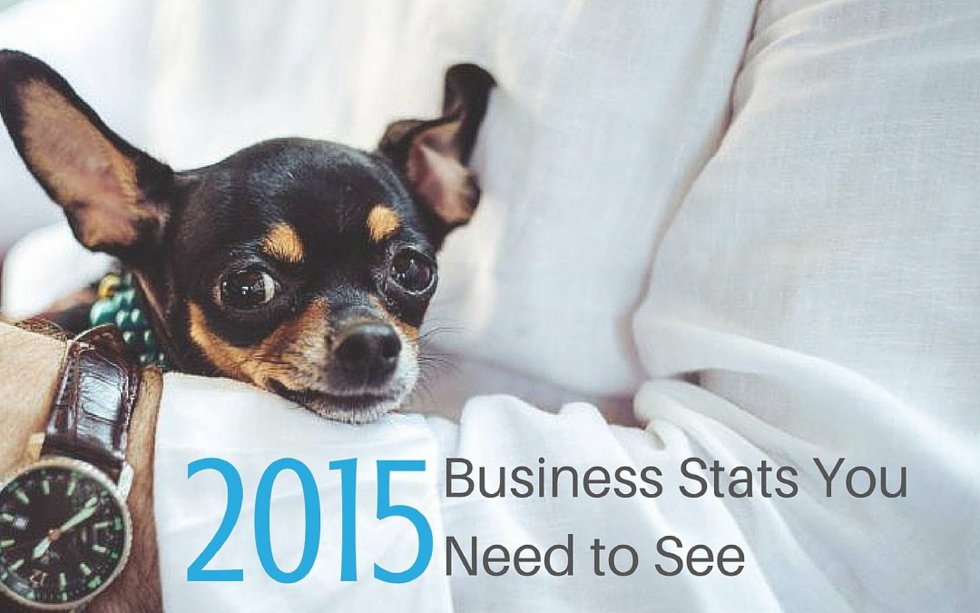 A Sneak Peak at Great Pet Business Stats