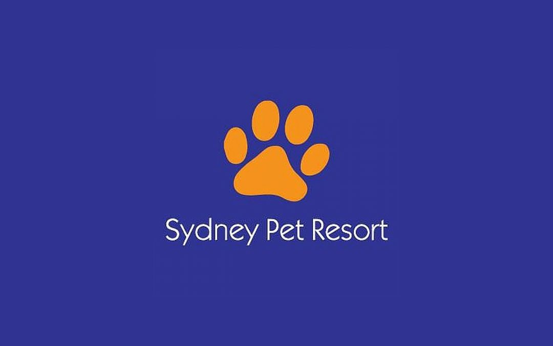 Customer Spotlight: Sydney Pet Resort