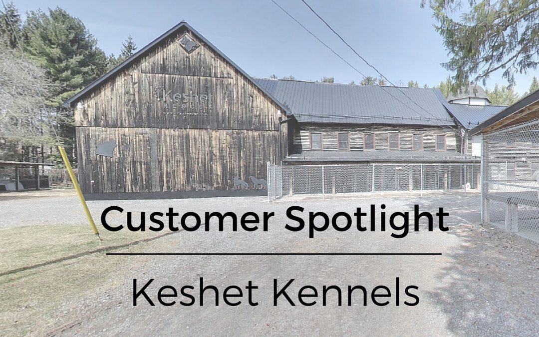 Customer Spotlight: Keshet Kennels