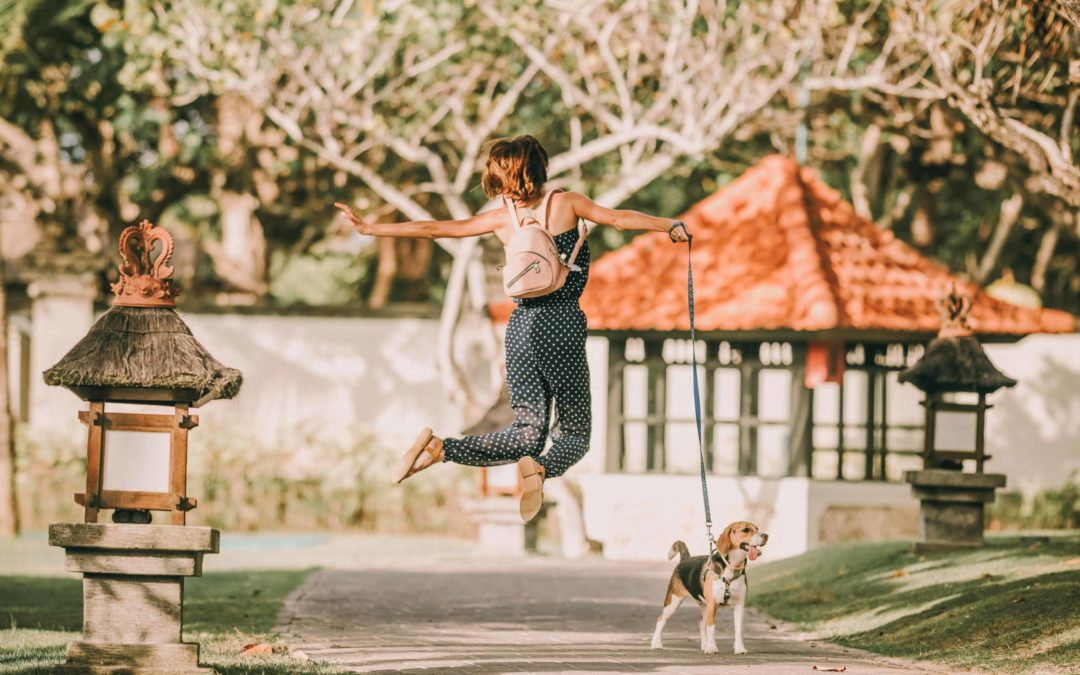 Keeping your Dog Busy While your Kids go back to School